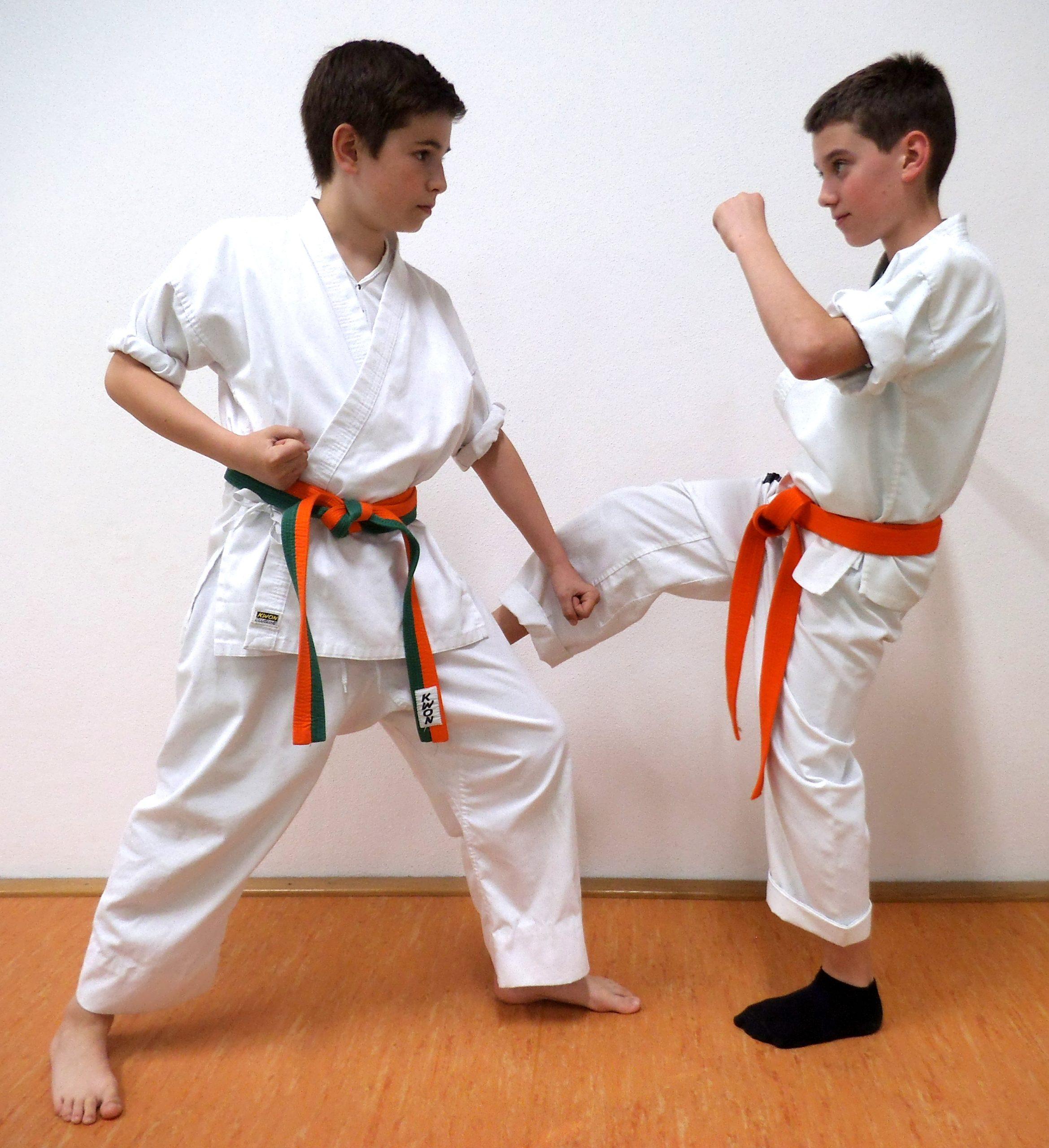 """Kampfkunst Karate – über rote Gürtel und den ganz besonderen """"Dojo"""""""